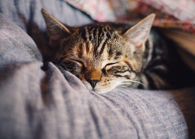 Co dělat pro lepší spánek?